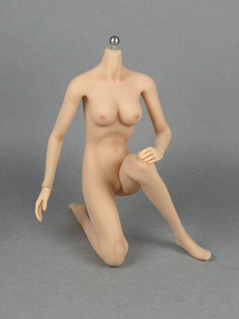 1/6 Phicen Super-Flexible Female Seamless Base Body with Stainless Steel Skeleton (Pale Skin Medium Bust) 1