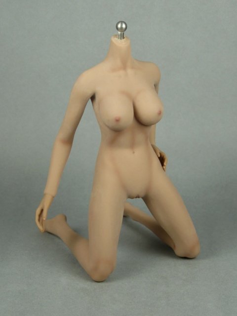 1/6 Phicen Super-Flexible Female Seamless Base Body with Stainless Steel Skeleton (Suntan Skin Large Bust) 2